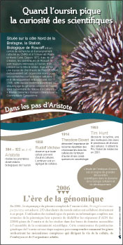 poster cnrs
